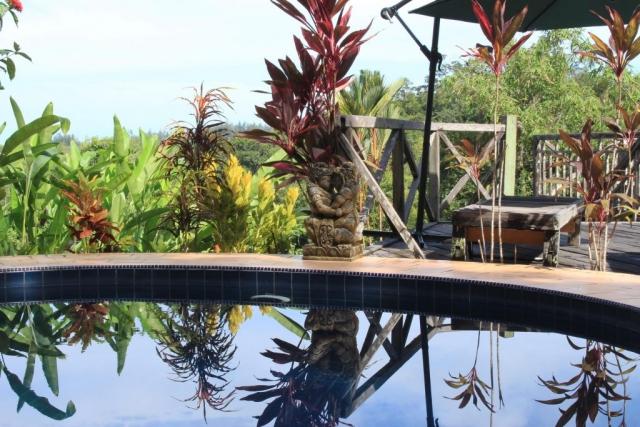 Nanga Damai Homestay Swimming pool